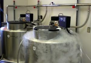 Freezers with LN2 vapor